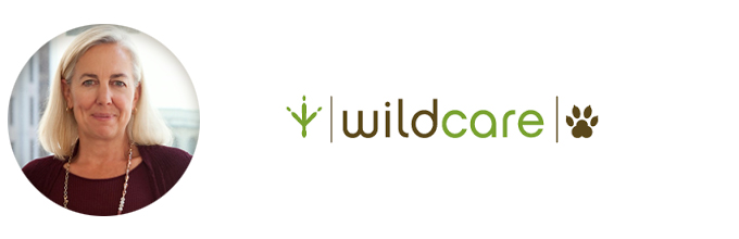Executive Placement: Ellyn Weisel Named Director Of Development With WildCare